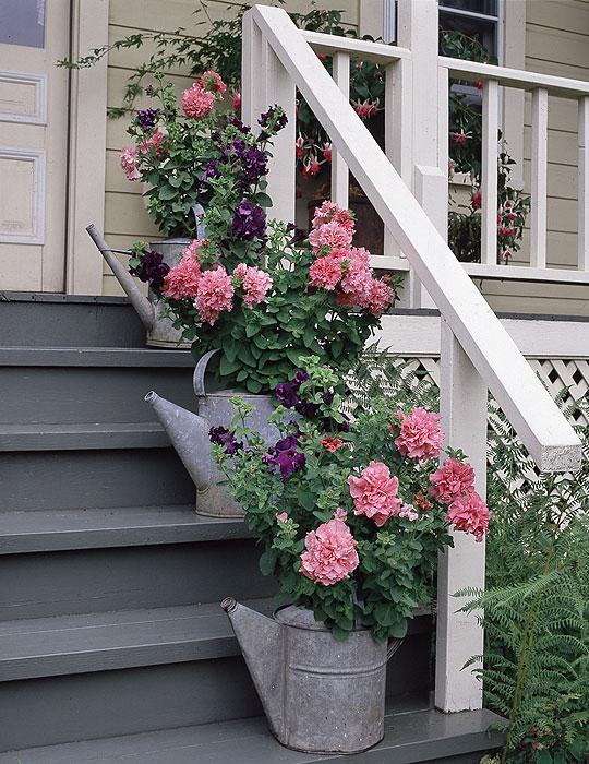 Container-gardening_lg14 DIY