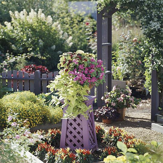 Container-gardening_lg1 DIY