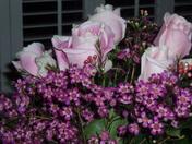 Roses_1_2
