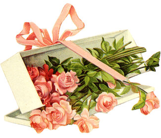 Pink_long_stem_roses_box_3