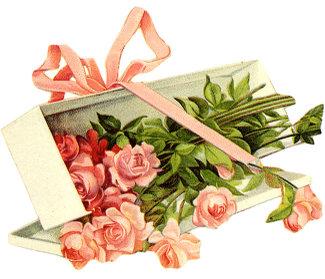 Pink_long_stem_roses_box_3